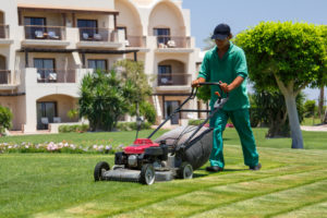 Basic Lawn Care Equipment For Your Landscaping Business