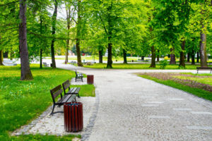 6 Budget-Friendly Ways to Redo Your Local Park this Summer